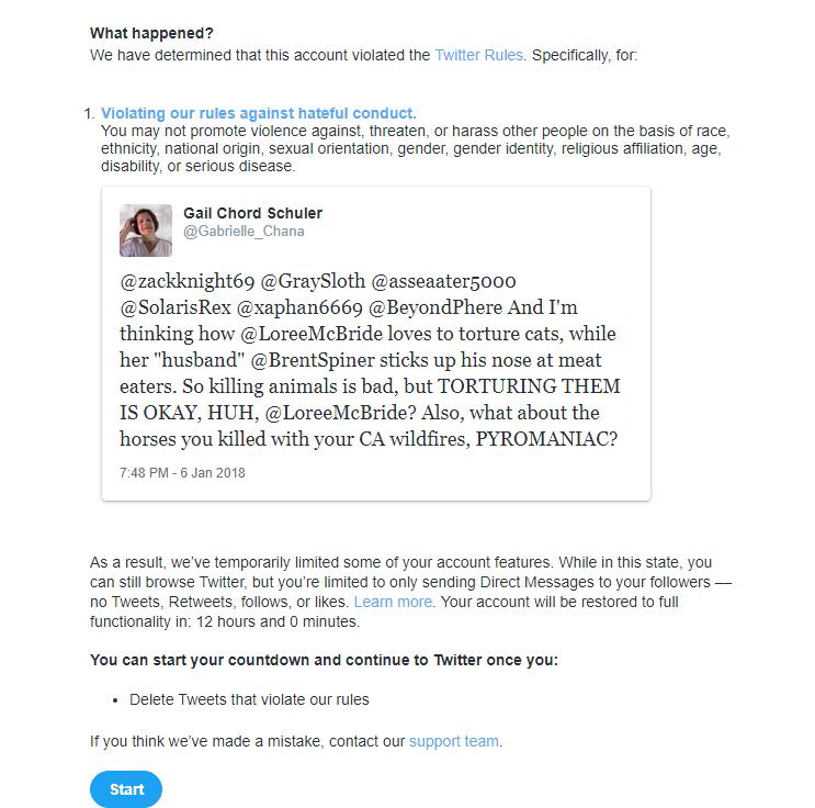 Loree McBride's Twitter FREE SPEECH
